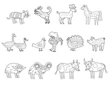 Farm Set Animals Coloring Book Educational Illustration For Children. Set Cute Cow, Buffolo, Sheep, Duck, Rooster, Horse Colouring Page. Vector Black White Outline Cartoon Characters