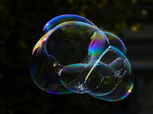 Colorful Soap Bubbles Floating In The Air