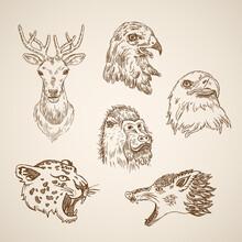 Wild Animal Bird Icon Set Engraving Style Pen Pencil Crosshatch Hatching Paper Painting Retro Vintag