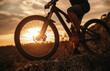 Leinwandbild Motiv Crop man riding bicycle at sunset