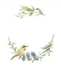 Watercolor Vector Wreath With Green Branches And Bird.