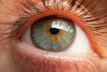 Extreme Macro Detailed Close Up Of A Human Eye With Central Heterochromia -different Colored Iris: Blue, Grey And Brown