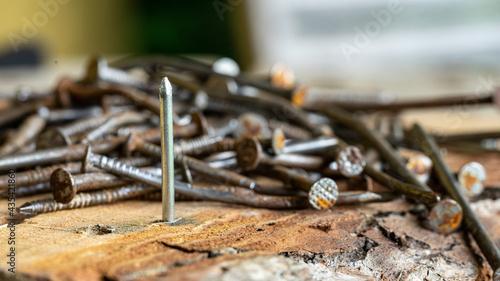 Photo Ein neuer Nagel vor einem Haufen alter rostiger Nägel