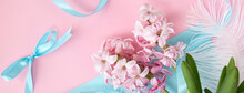 Banner With Spring Coming Concept. Pink Hyacinth Flowers On Pastel Blue And Pink Colors And Blue Ribbons. Spring Or Summer Background.