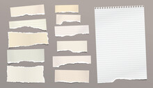 Set Of Torn Yellow Paper Stripes And Note, Notebook Sheet Stuck On Brown Background. Vector Illustration