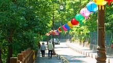부처님 오신 날을 축하하기 위해  걸어둔 연등
