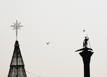 Chistmas Tree, Statue And Bird In Venice, Italy.