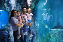 Happy Family Near Aquarium In Oceanarium. Spending Time Together