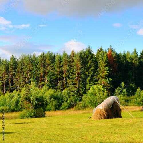 Mountains, a vast meadow, haystacks on bright summer day. Fototapet