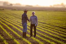 Two Men Shaking Hands In Corn Field Reaching Agreement.