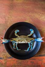 Closeup Of Blue Crab