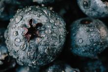 Closeup Of Blueberries