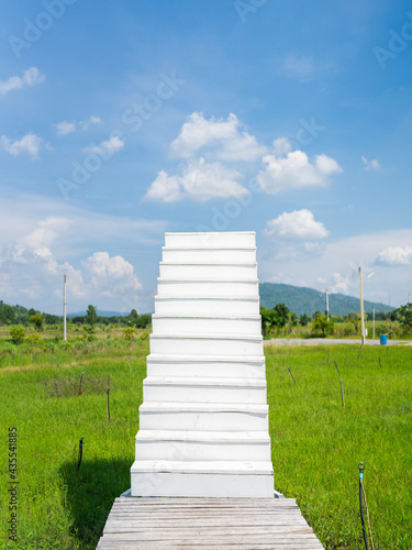 Canvastavla white stairs from green grass field garden up to cloud sky, faith and path to su