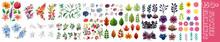 Set Of Floral Branch. Flower Pink Rose, Green Leaves. Wedding Concept With Flowers. Floral Poster, Invite. Vector Arrangements For Greeting Card Or Invitation Design.Botanical Printable Design. Floral