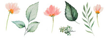 Watercolor Pink Flowers And Green Leaves Illustration
