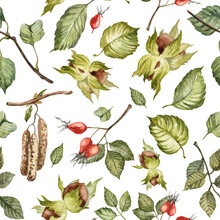 Seamless Pattern With Hand Painted Watercolor Forest Leaves Nuts And Berries