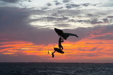 Pro Surfer James Jenkins Jumps His Wing Surfer At Sunset Over The Pamlico Sound At Nags Head, North Carolina