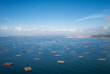 Fish Farm, Drone Panorama View, In The Atlantic Ocean, Arousa Island, Galicia