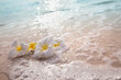 Leinwandbild Motiv White frangipani plumeria flowers on sand at the beach front of the ocean waves background.