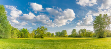 Idyllic Mountain Landscape With Fresh Green Meadows And Blooming Wildflowers. Idyllic Nature Countryside View, Rural Outdoor Natural View. Idyllic Banner Nature, Panoramic Spring Summer Scenery