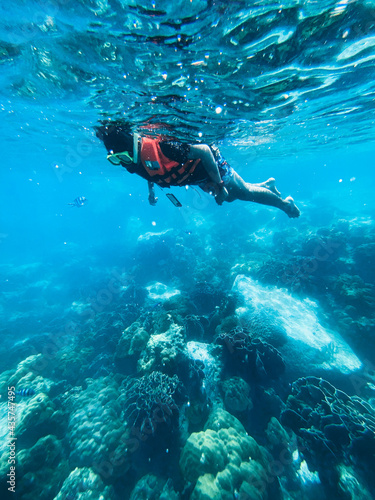 Fotografering Under the sea Travel in the diving sea