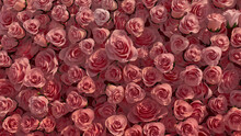 Beautiful, Elegant Wall Background With Roses. Red, Floral Wallpaper With Vibrant, Colorful Flowers. 3D Render