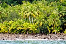 Coast Landscape, Marino Ballena National Park, Pacific Ocean, Uvita De Osa, Puntarenas, Costa Rica, Central America, America