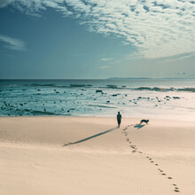 Idyllic Seascape With A Man Walking On The Lonely Beach With His Dog
