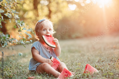 Murais de parede Summer seasonal picnic food