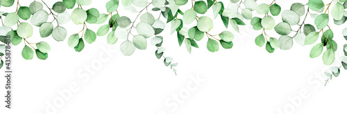 seamless border, frame of eucalyptus leaves and branches. watercolor drawing green leaves of eucalyptus on white background. print for wedding, invitations, congratulations. web banner