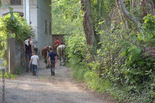 Susa Valley, Piedmont - May 25, 2021: Children also help farming families organi Fototapeta