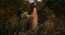 Beautiful Woman In Linen Dress Gathering Wildflowers In Summer Meadow In Evening. Atmospheric Stylish Vintage Image. Stylish Young Female In Rustic Dress Picking Flowers In Countryside