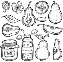 Pear Sketch. Delicious And Healthy Fruit. Sketch. For Your Design.