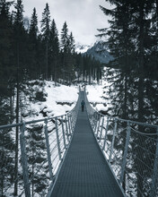 Rear View Of Man Walking On Footbridge Amidst Snow Covered Land And Trees In Forest