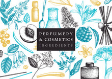 Vector Background With Fragrant Fruits And Flowers. Hand Sketched Perfumery And Cosmetics Ingredients Illustration. Aromatic And Medicinal Plants Banner Design.