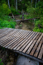 Wooden Bridge Over A Forest River With Clear Water On A Hiking Trail. Green Forest With Green Tree Leaves And Green Grass In Summer.