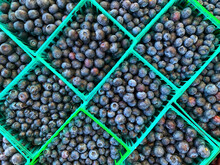Baskets Of Ripe Blueberries At A Farmers Market