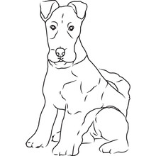 Fox Terrier Dog, Hand Sketched Vector Drawing