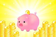 ぶたの貯金箱とお金5
