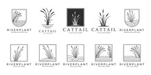 Set Cattails Logo Bundle Vector Illustration Design, Cattail Icon