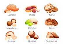 Set Of Nut Icons, Whole And Cracked Nuts