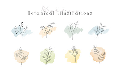植物の線画イラストのセット 水彩 シンプル ボタニカル ナチュラル 葉 自然 おしゃれ
