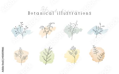 Tela 植物の線画イラストのセット 水彩 シンプル ボタニカル ナチュラル 葉 自然 おしゃれ