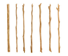 Watercolor Wooden Sticks Set. Hand Drawn Tree Branches Isolated On White. Bare Twigs Decoration, Wood Trunks, Rustic Natural Design