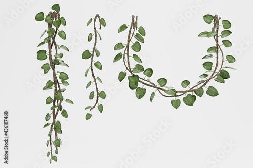 Fotografiet Realistic 3D Render of Liana Plants