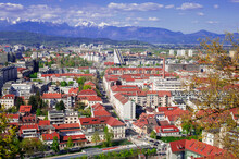 Red Tile Roofs Of The Capital Of Slovenia From The Height Of The Hill Of Ljubljana's Castle