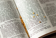 Open Holy Bible Book New Testament Scriptures, The Gospel Of Matthew Have Faith Like A Mustard Seed In God And Jesus Christ. Christian Trust, Growth, Hope, And Love.