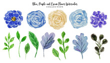 Blue And Cream Flower Watercolor