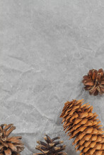 In The Lower Corner Of The Photo On Crumpled Paper Are Cones From Coniferous Trees