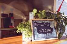 Close Up View Of Food Truck With Special Offer Board And Herbs